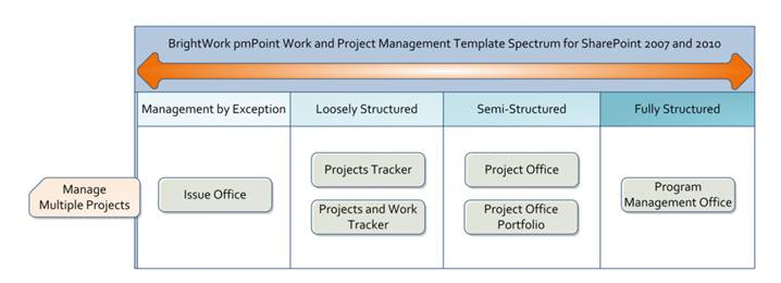 Brightwork pmpoint templates overview description dprojectsprojectsimageswtlcatswtl2010multipleprojectsword pronofoot35fo Image collections